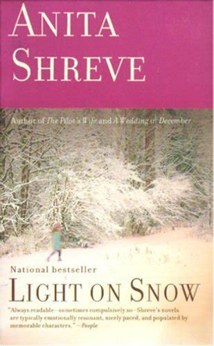 light it up a ash novel books light on snow by shreve reviews discussion