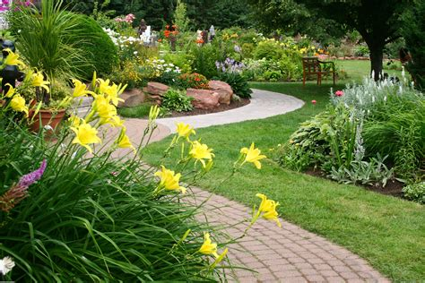 backyard flowers garden full of flowers wallpaper 11785 open walls