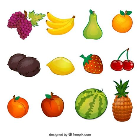 clipart collection free fruit illustrations collection vector free