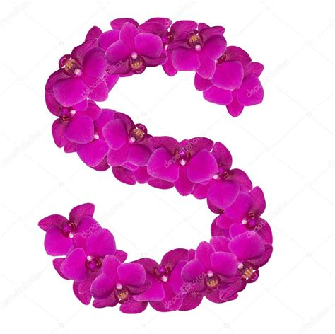 fiore con s letters made of pink flowers s letter flower alphabet
