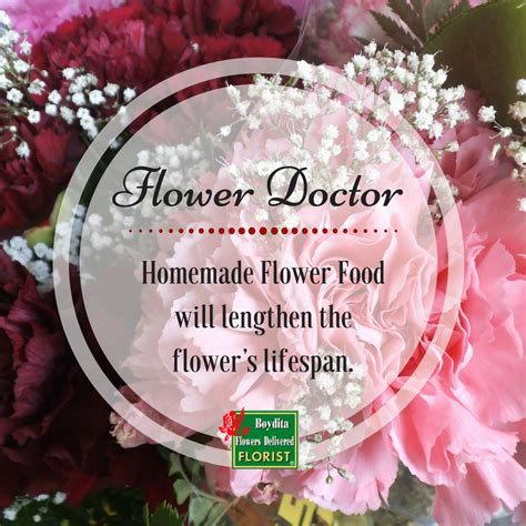 homemade cut flower food homemade flower food how flower food affects fresh roses