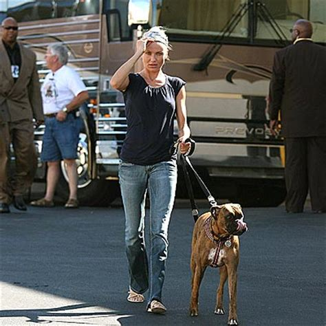 cameron diaz dog celebrities and boxers the daily boxer