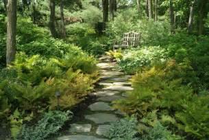 vivaces les jardins d ombre vivaces