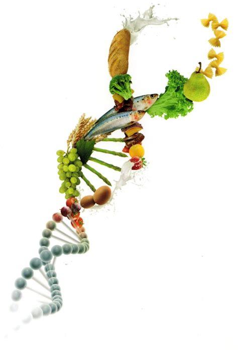 epigenetica e alimentazione epigenetica e alimentazione 28 images epigenetica ed