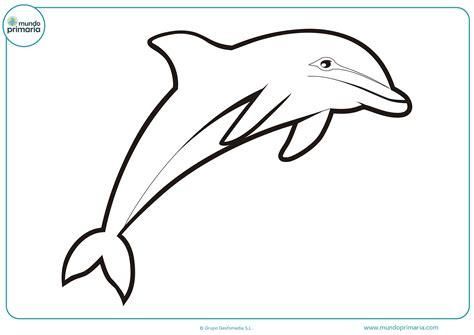 imagenes de matematicas en blanco dibujos de delfines para colorear mundo primaria