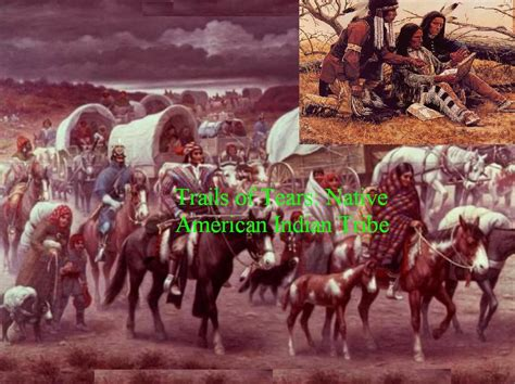 american tribes the history and culture of the creek muskogee books history of indigenous americans