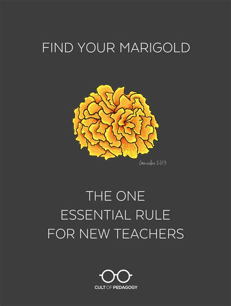 Find Your Find Your Marigold The One Essential Rule For New Teachers