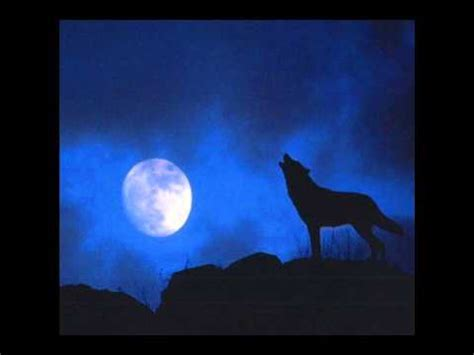 howling sounds 750 kb free wolf howl efec mp3 mp3 songs