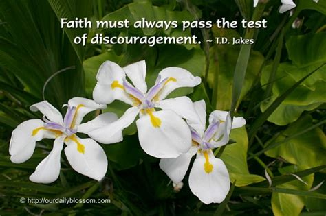passing the test of faith the rewards for trusting god and three fundamental steps for walking through trials adversities and hardships books faith must always pass the test of discouragement by t d
