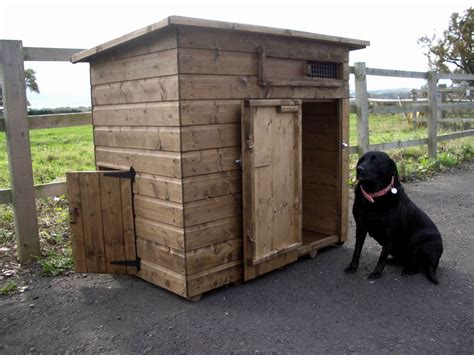 For Those Of You Who Live In Cold Climates What Is The Best Dog House Design Dog