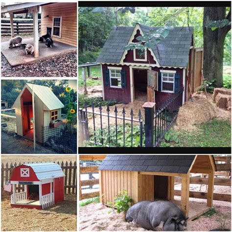 pig housing plans pig house plans numberedtype