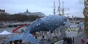 le projet 171 la baleine bleue 187 224 un symbole de la