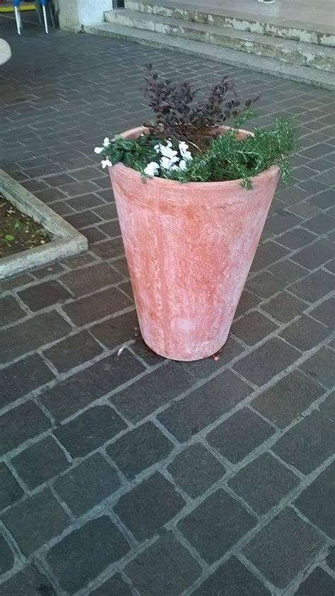 Aprilia Fiori aprilia si fa con le nuove fioriere donate dal mercato dei fiori il caff 232 tv