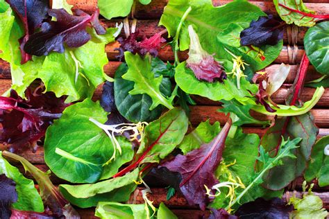 How Well Do You Springs Vegetables by Get To Your Leafy Greens