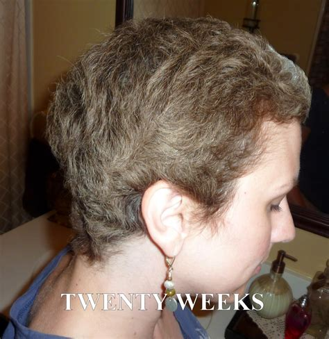 6 months chemo hair anncredible hair growth progression after chemo six