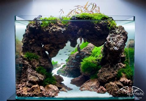 Freshwater Aquascape Ideas by Best 25 Aquascaping Ideas On Aquarium