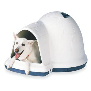 dog houses south africa small igloo dog house house plan 2017