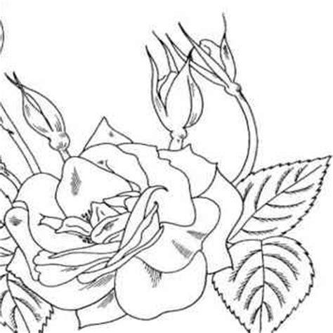 imágenes de flores muy bonitas para dibujar dibujos de rosas facil rapido y bonitas para dibujar