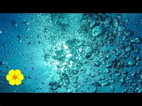 into the blue underwater sounds of nature for relaxation big water being poured into tank 1 hour doovi