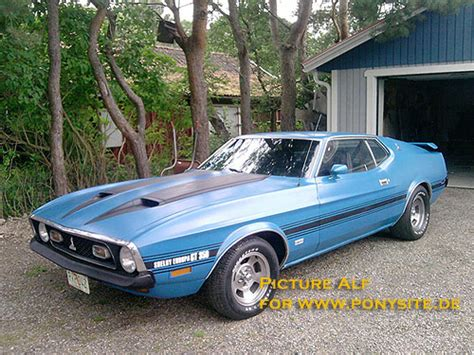1971 mustang shelby 1971 72 gt350 shelby the mustang source ford mustang