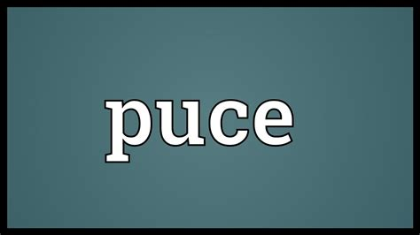 what color is puce puce meaning