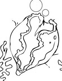 giant clam coloring page handipoints