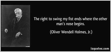 your right to swing your fist ends brown nose quotes quotesgram