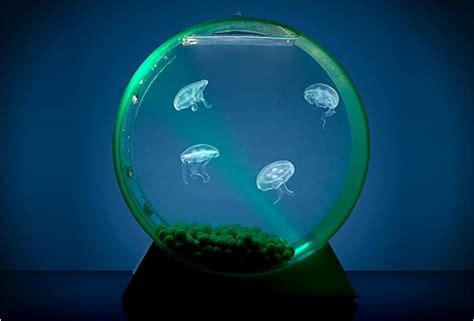 Tempat Lu Akuarium cara desain deretan 30 akuarium gokil unik keren