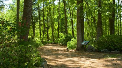 Botanical Gardens In Huntsville Al Huntsville Botanical Garden In Huntsville Alabama Expedia
