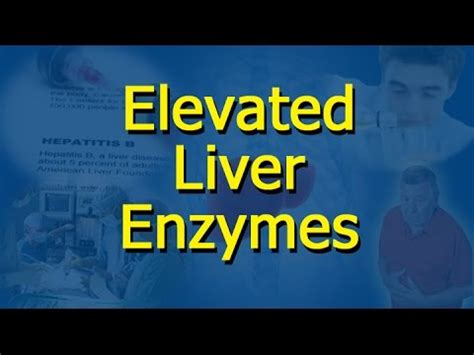 liver enzymes high liver biopsy doovi