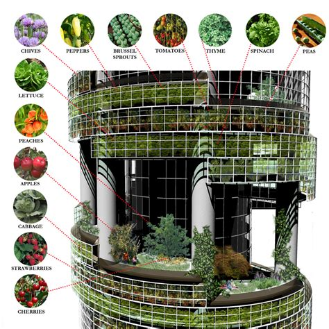 Self Sustaining Garden by Vertical Farming