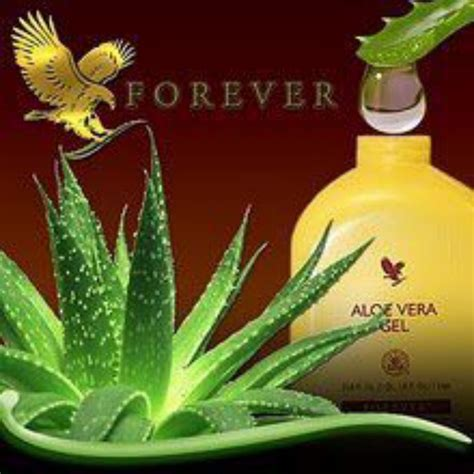 Aloe Vera Detox Forever Living by 17 Best Images About Foreverliving Products On