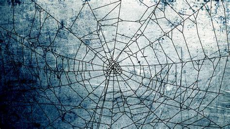 spider web background spider web background hd wallpapers 34774 baltana