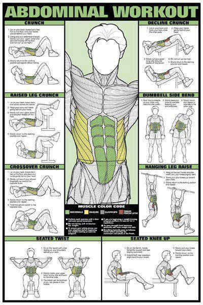 1000 images about do you even workout on pinterest lateral raises