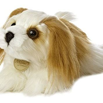 shih tzu brush best shih tzu dogs products on wanelo