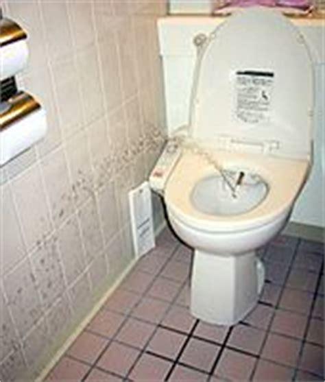 Japanese Style Bidet Toilets In Japan