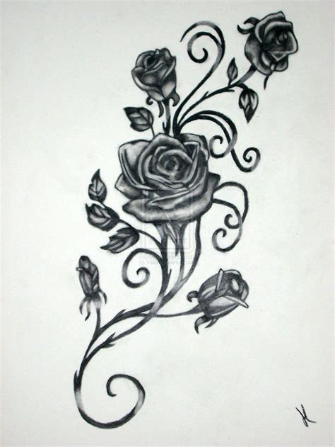 rose tattoo drawing vine black tattoos designs for