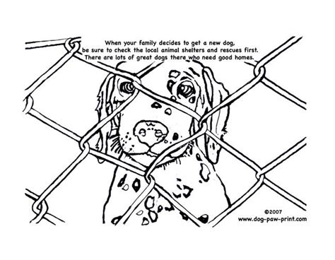 rescue dogs coloring pages animal shelter coloring page girl scouts pinterest