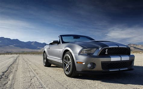 ford shelby mustang gt 500 wallpaper hd car wallpapers