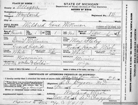 Allegan County Records Wayland Allegan Co Mi Register Of Births 1911 1919