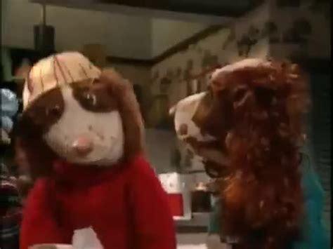 puppy city city season 2 episode 10 sick as a anime