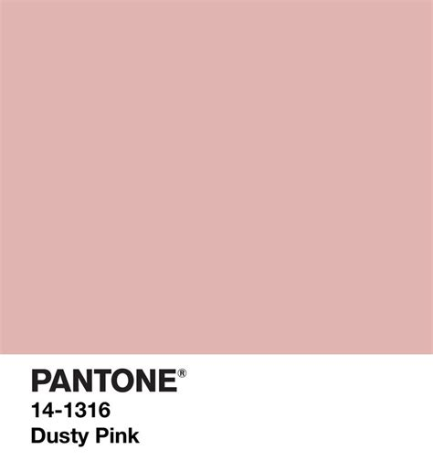pink pantone dusty pink pinks e rosas pinterest pink pantone and