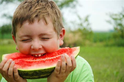 can eat watermelon growing watermelons bonnie plants