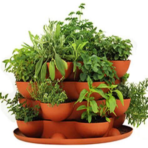herb pots outdoor terracotta herb garden stackable planter mediterranean
