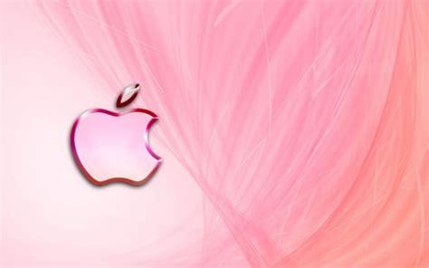 imagenes de rosas varios colores fotos de color rosa