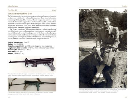 italian partisan weapons  wwii  schiffer