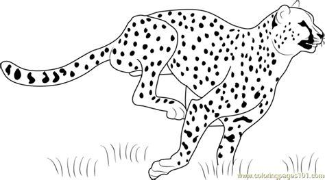 cheetah girl coloring page get this cheetah coloring pages printable m3sb0