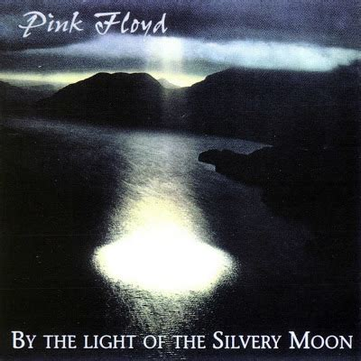 by the light of the silvery moon by the light of the silvery moon life is but a labyrinth