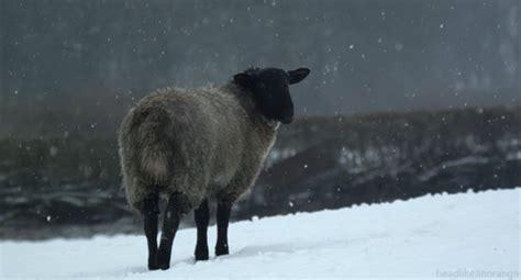 habitually chic winter wonderland