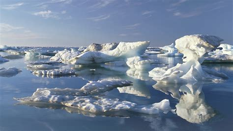 arctic sea our climate our future as obama visits arctic